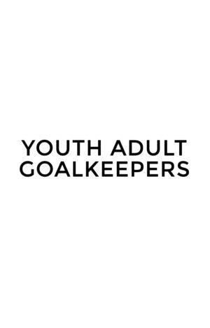 WSFA Youth Adult Goalkeepers